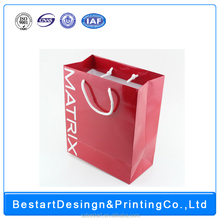 luxury shopping paper bag EDITED