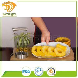 Factory Promotion fruit and vegetable cutting tool handheld cylindrical stainless steel pineapple cutter