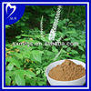 High Quality--Black Cohosh P.E 2.5%,5%,8%
