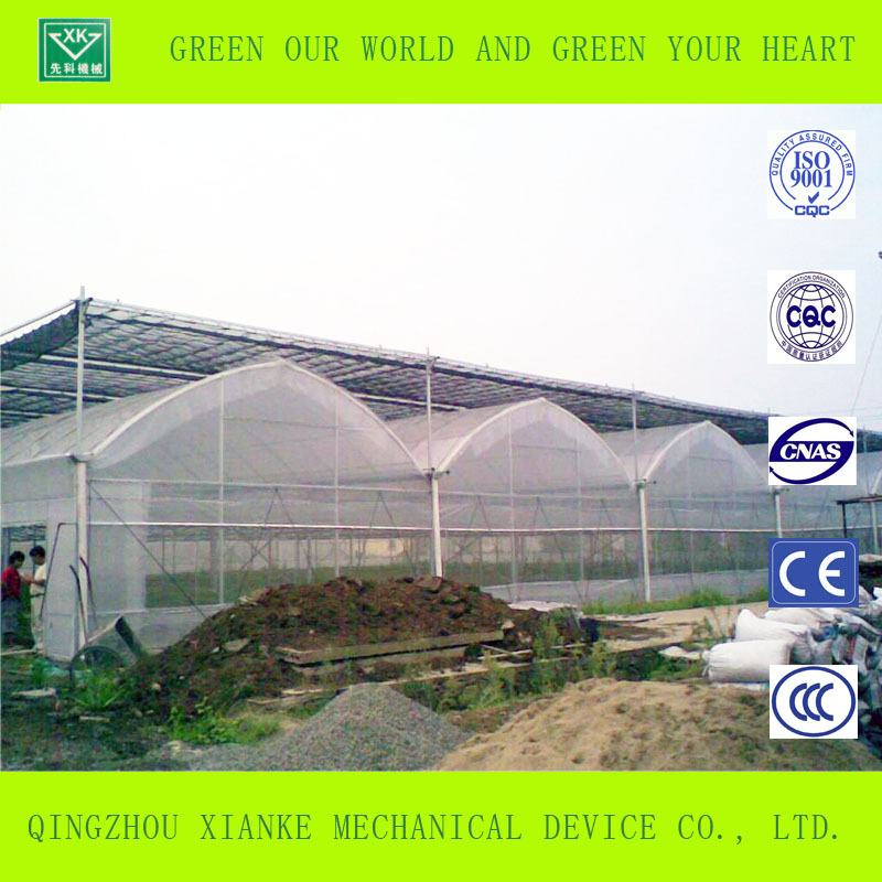 Commerciale sistemi idroponici per serra di verdure serre for Serre tunnel usate