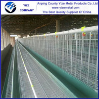YIZE low disease and death rate 5000 chickens cage