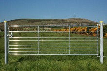 Factory Direct Farm Gate (with 20 years experience ) Supplier