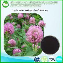 100% Natural Trifolium pratense L extract / Red Clover Extract /Trifolium Extract Isoflavones
