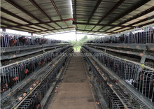 High Quality stainless steel chicken layer cage on sale
