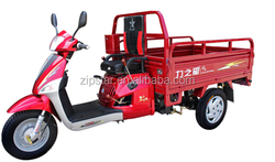 110cc 3 Wheel Motorcycle for Adults