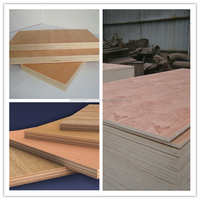 18mm 1220*2440 size bintangor,okoume ,sapelli cheap commercial plywood price