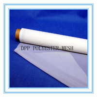Plain Weave Type 150 micron silk screen