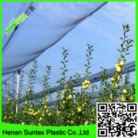 Factory supply 2015 hdpe Agricultural anti hail netting /orchard tree hail protection net/garden protection net