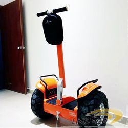 2 wheel cargo scooter china for golf
