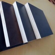 Phenolic WBP birch core film faced plywood