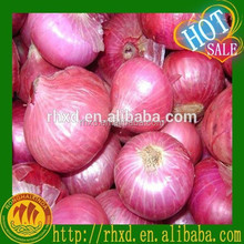 fresh onion best seller