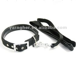 best selling fome and polypropylene pet leash