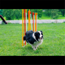 Pet Products Dog Agility Equipment China For Dog