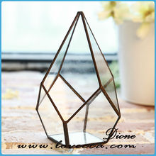 indoor plant glass terrarium,hot sell glass plant house