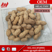 chinese peanut in shell 9/11, blanched peanuts 25/29