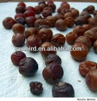 brown jumbo raisin/dried fruits/dates/mango/pech /fruit