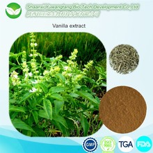 Pure Natural Food Flavour Vanilla Extract / Coriander Extract 10:1