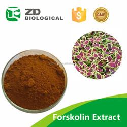 forskolin capsules herb medicine,forskolin capsule slimming capsule