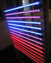 Big promotion! t8 blue/red led plant grow light tube, G13 T8 grow tube, led integration T8 grow tube light