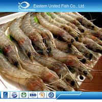 alibaba gold supplier export live hoso vannamei shrimp