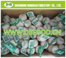2015 New crop China farm fresh garlic
