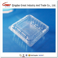 Disposable Small Square Clear Plastic Blueberry Container