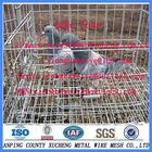 gaiola pombo galvanizado