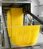 Fresh noodle maker/Fresh noodle making machine +8618939580276
