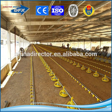 dfx brand painting or hot galvanized steel structure prefabricaed chicken farm