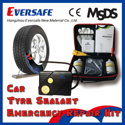 Zhejiang Eversafe Car Tire Sealant with Portable Electric Air Compressor 12V 600ml (SHW01)