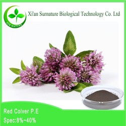 100% natural Red Clover PE/red clover tea