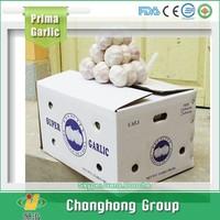 2015 New Crop Snow White Garlic