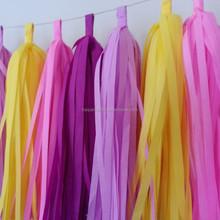 Handmade decorative Tissue Paper Tassel Garland NEW Cinderella party decoration kit