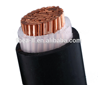 1X800 sq. mm Cu /XLPE /PVC 600/1000V Power cable