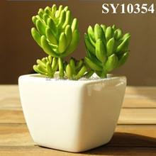 Ceramic mini square succulent plant pots