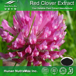 Hot sale Plant extract Red clover powder extract/Red clover powder/Isoflavones