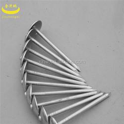 """China 2.5"""" umbrella roofing nail"""