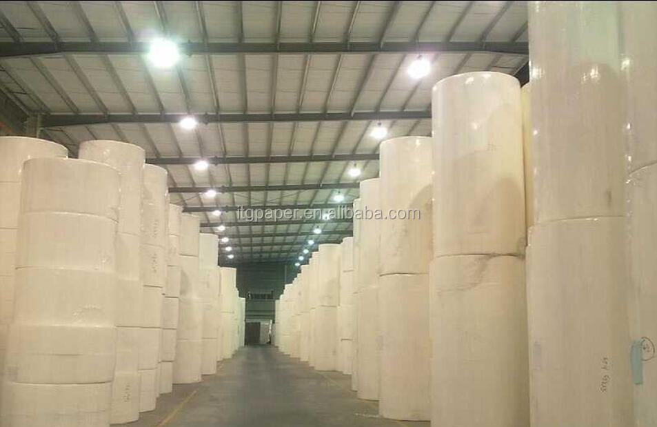 5 Ply Toilet Paper