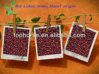 All kinds of small red kidney beans in Shanxi origin
