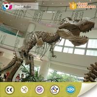 Life size dinosaur fossil model replica