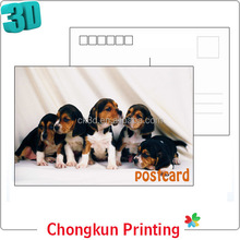 Cute Pet Design 2014 Custom 3d lenticular post cards for gifts & premiums