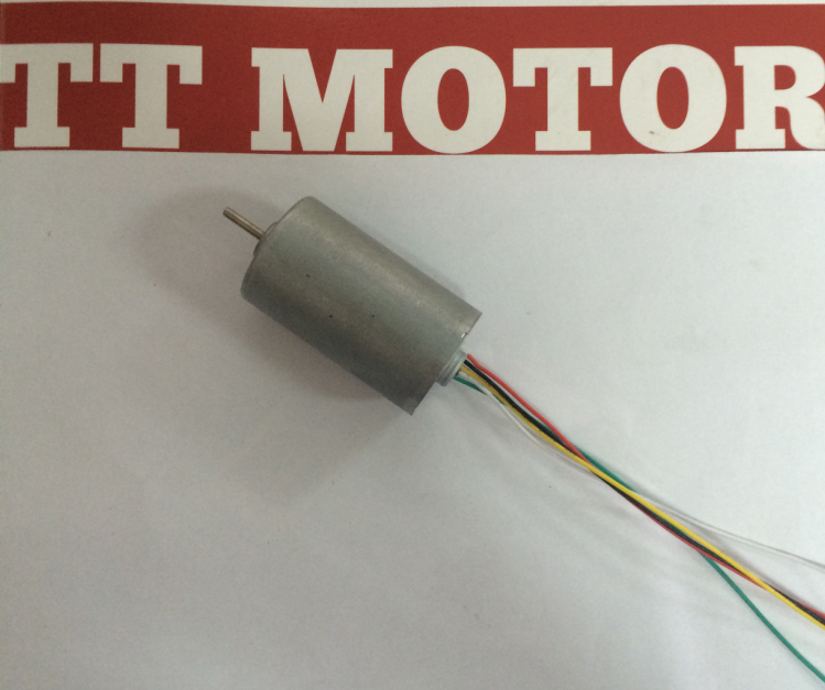 Dc Submersible 6000rpm Brushless Direct Current Motor
