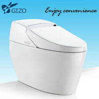 ELECTRIC TANKLESS Toilet