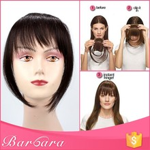 Clips On/in Side Swept Natural 100 Remy Indian Human Hair Extension Hairpiece Fringe Bangs For Black Women