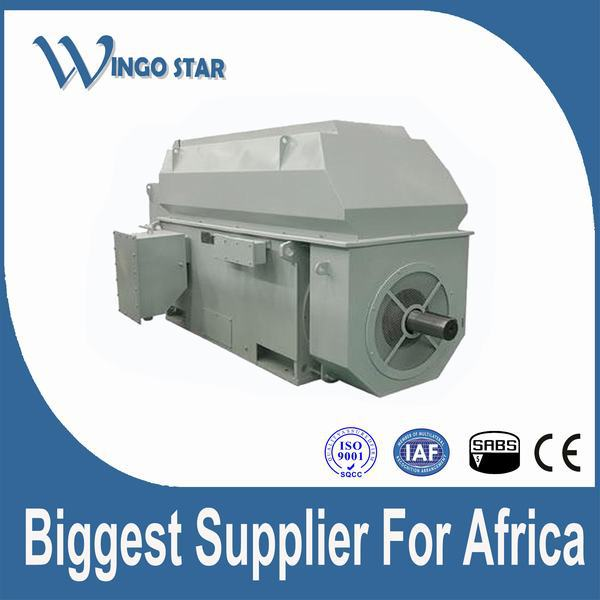 high voltage three phase traction motor
