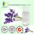 Lavender oil, cosméticos grau essenciais da planta de óleo, 100% natureza, baixo preço