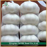 Wholesale China Frozen Pure White garlic(5.0cm up,5P/mesh bag)