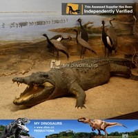 My Dino-Animatronic animal,life size animal,animatronic crocodile