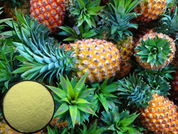 10:1 Fresh Fruit extract Pineapple Extract,pineapple juice concentrate Bromelain has the effects of improving the immunity
