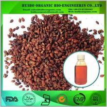 Seabuckthorn fruit oil / bulk seabuckthorn oil